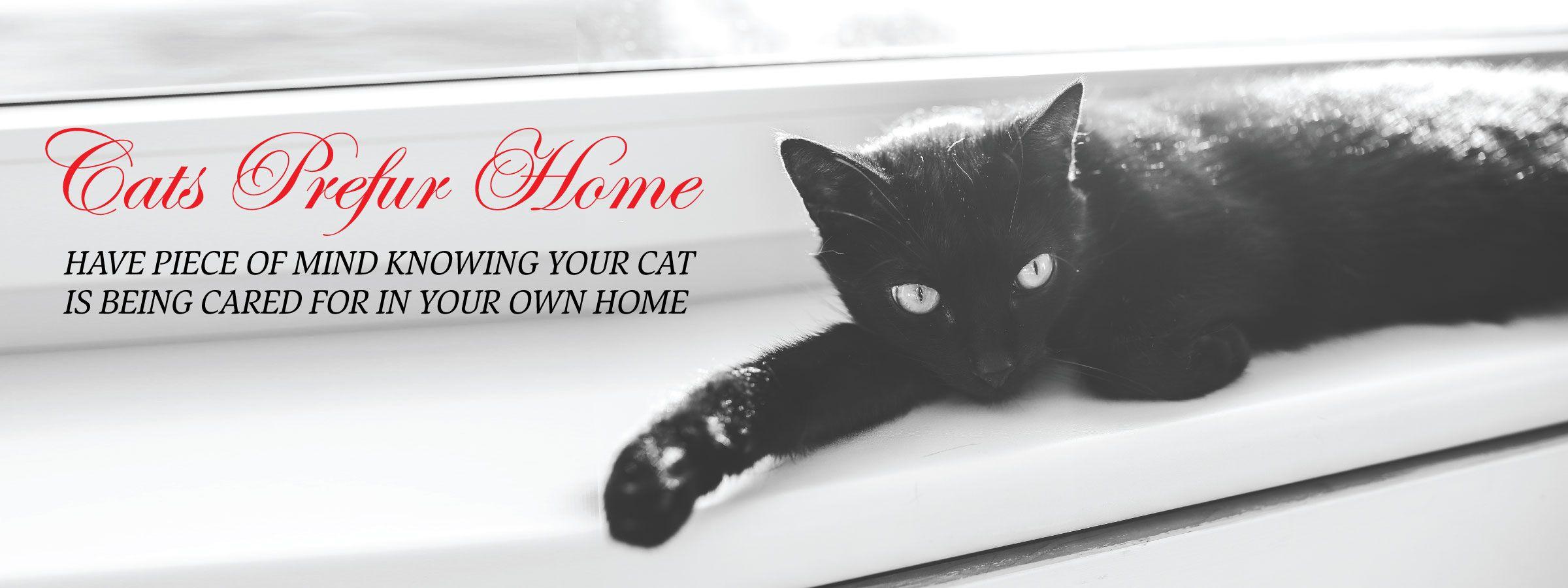 cats-prefur-home